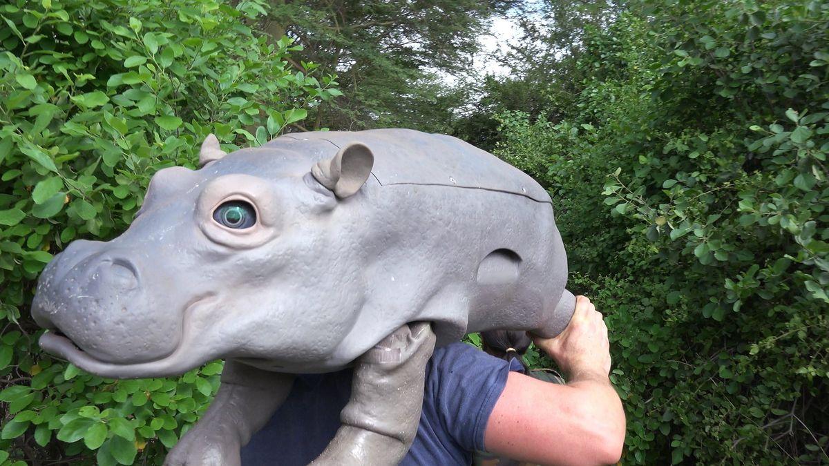 spy in the wild - nijlpaard